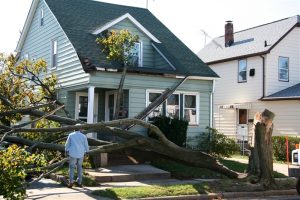 Got Hurricane Damage? Call a Pro for Repairs
